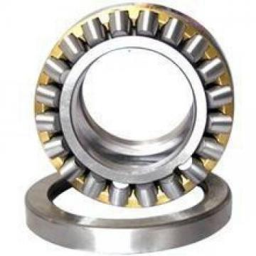 INA NSK High Quality Needle Roller Bearing Nkia5905